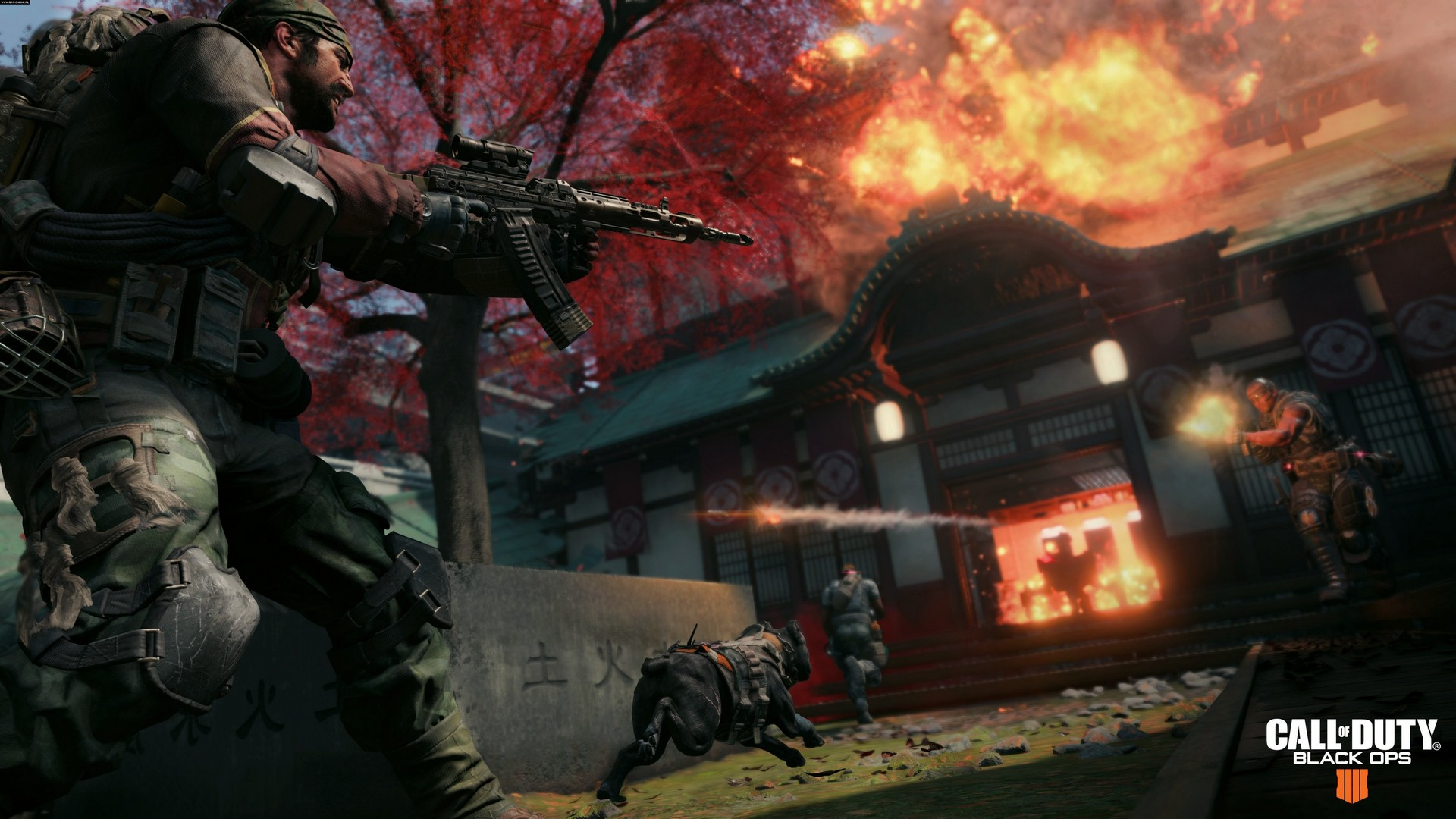 Call of Duty Black Ops 4 IIII screenshots slike